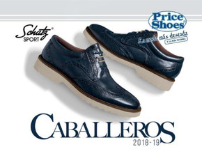 Catalogo Price Shoes Importados 2019 Hartirubilara